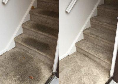 carpet cleaning boca raton