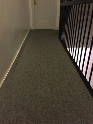 carpet cleaners boca raton fl