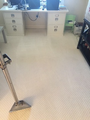 carpet cleaners boca raton